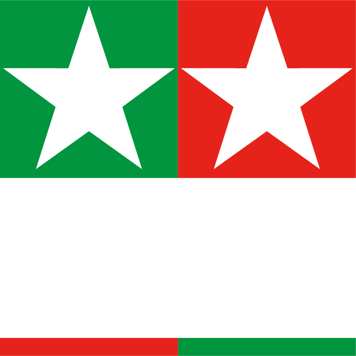 star twin